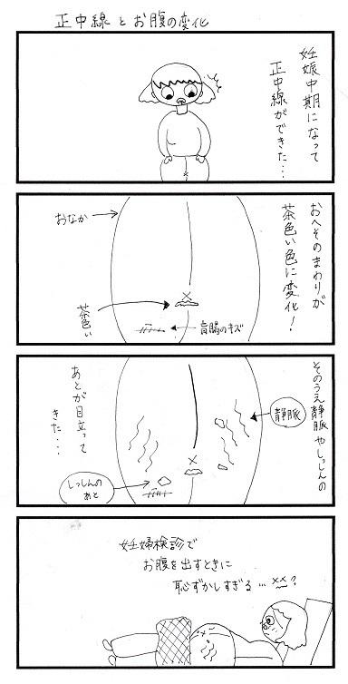 正中線とお腹の変化.jpg